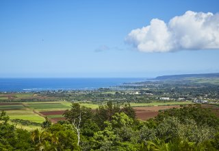 103+ Acres - Breathtaking North Shore Estate
